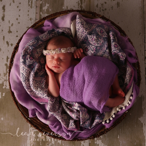 baby claire sleeps in purple basket during newborn portrait session