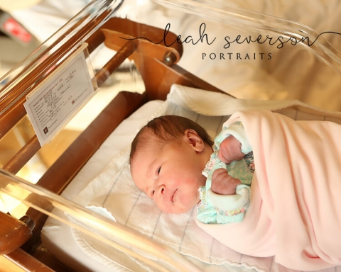 fresh 48 newborn photography carmel in