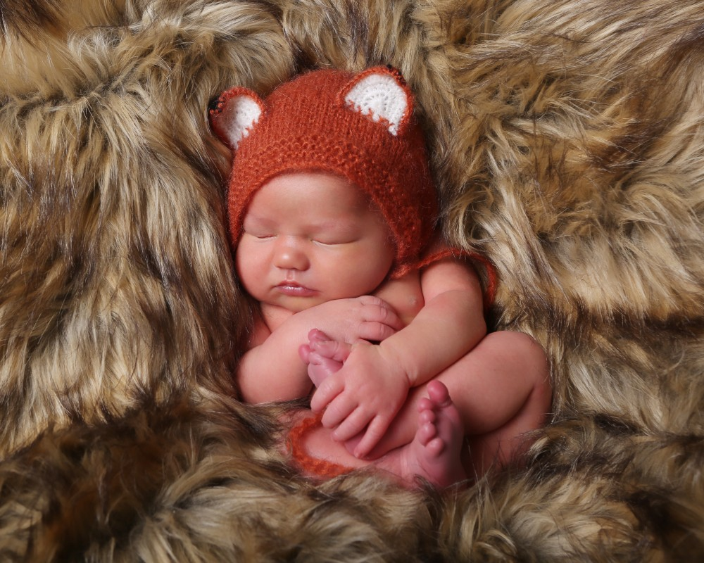 newborn baby photograph dressed as fox