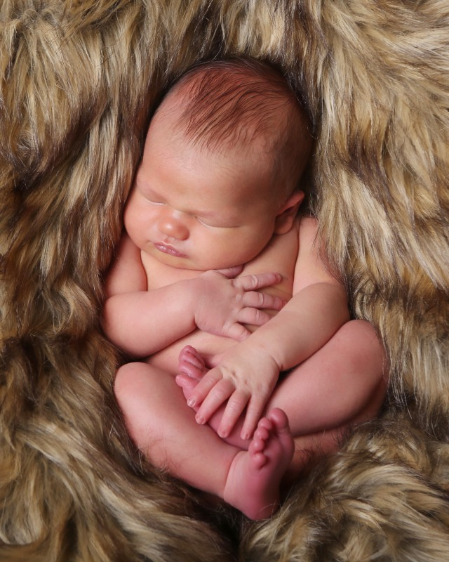 newborn-boy-on-fur-carmel-indiana