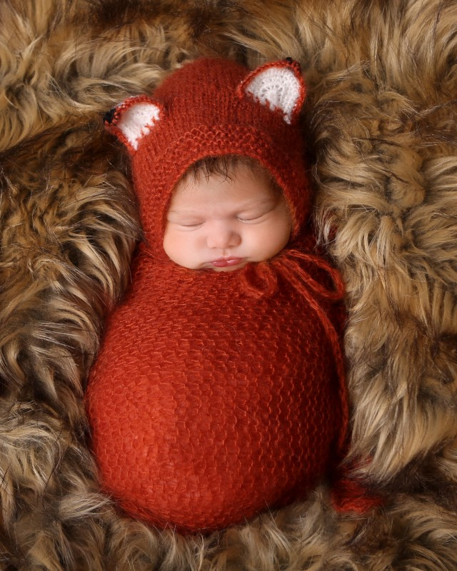 newborn-dressed-fox-indianapolis-indiana