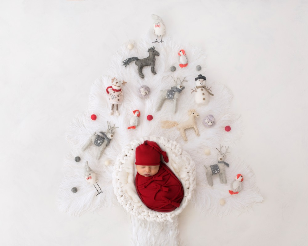 newborn-photography-christmas-indianapolis