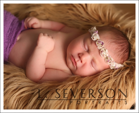 newborn photographs of adeline