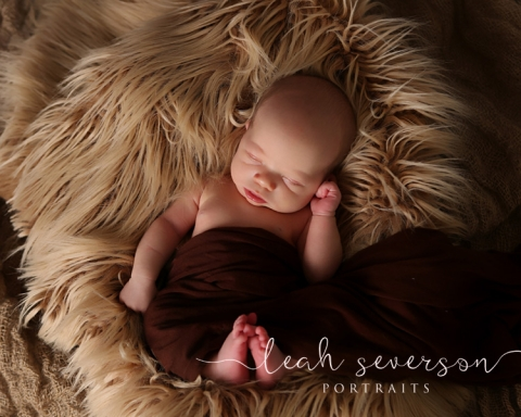 baby-photographer-indianapolis-adler