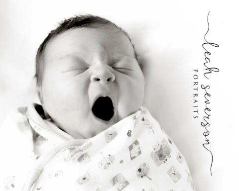 fresh-48-newborn-photographer-carmel-in-olivia