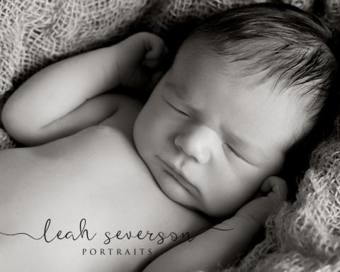 newborn-photographer-carmel-in-bennett (2)