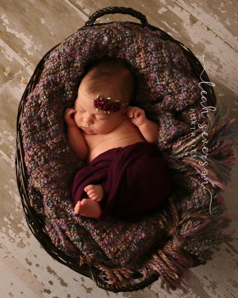 westfield baby photographer halle sleeping in basket