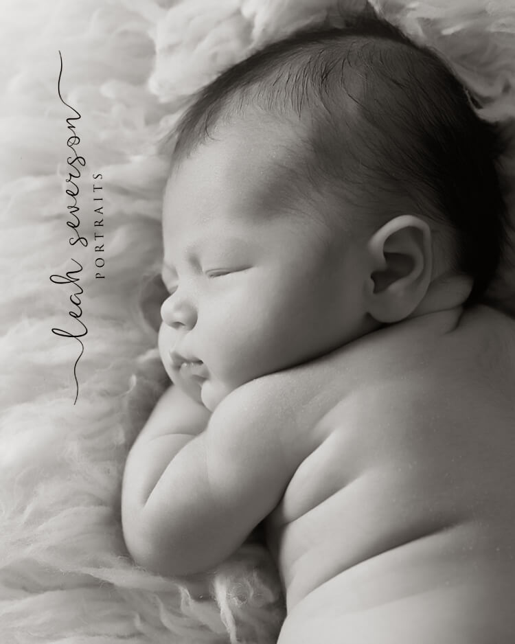 carmel baby photography halle black and white picture