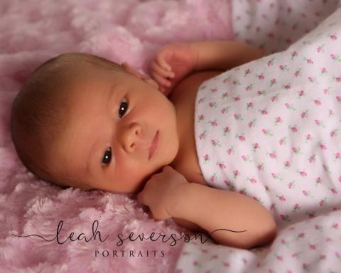 newborn-photography-westfield-caroline