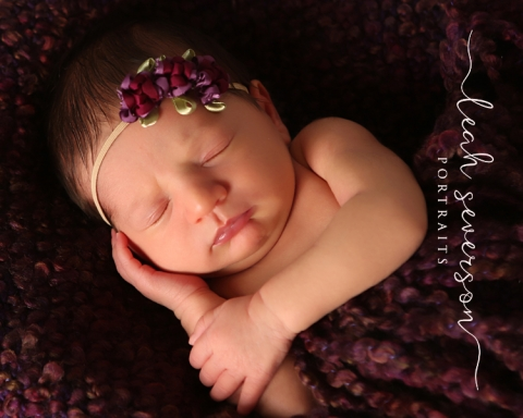 baby-photography-indianapolis-cece