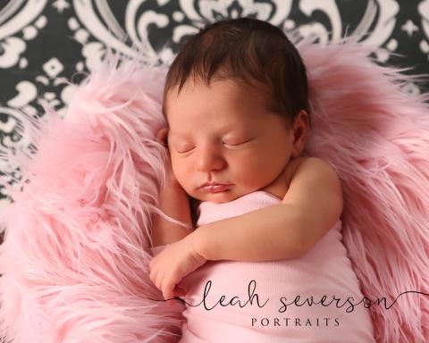 carmel-newborn-photography-cecec