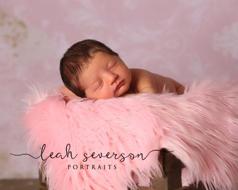 newborn-photography-indianapolis-cecelia