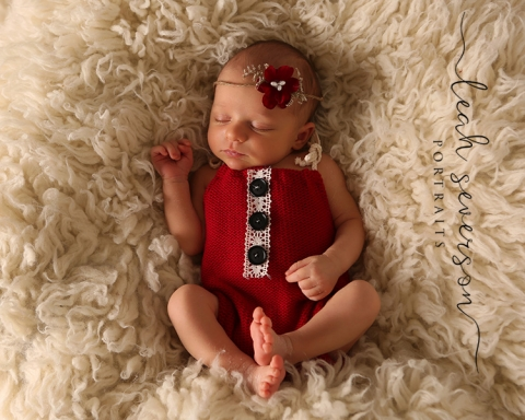 newborn photography in christmas outfit
