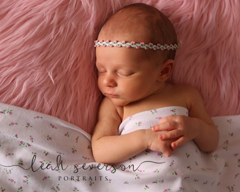 indianapolis newborn photography of sloan