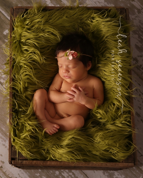 baby sleeping portrait session