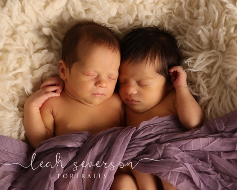 photograph of newborn twin baby girls in indianapolis