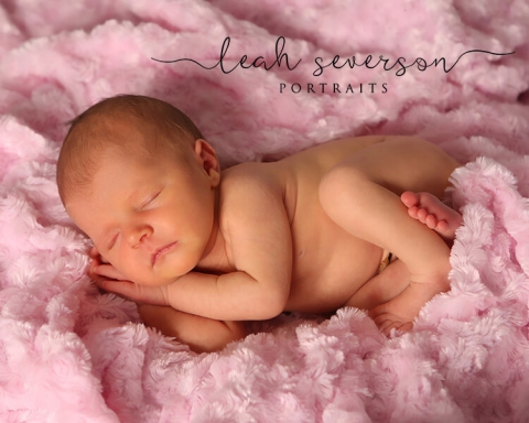 newborn photography baby on pink blanket
