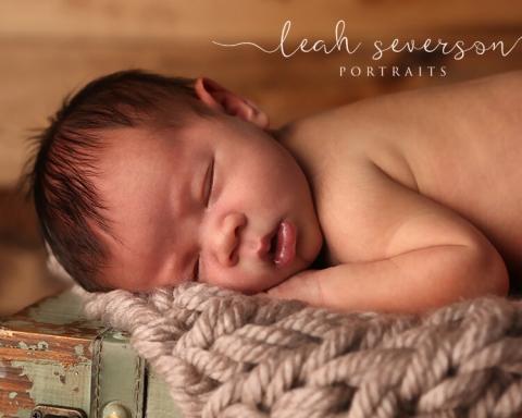 carmel newborn photography
