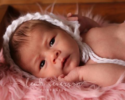 best newborn photography indianapolis lillian