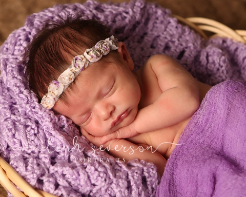 newborn portrait kennedy indianapolis
