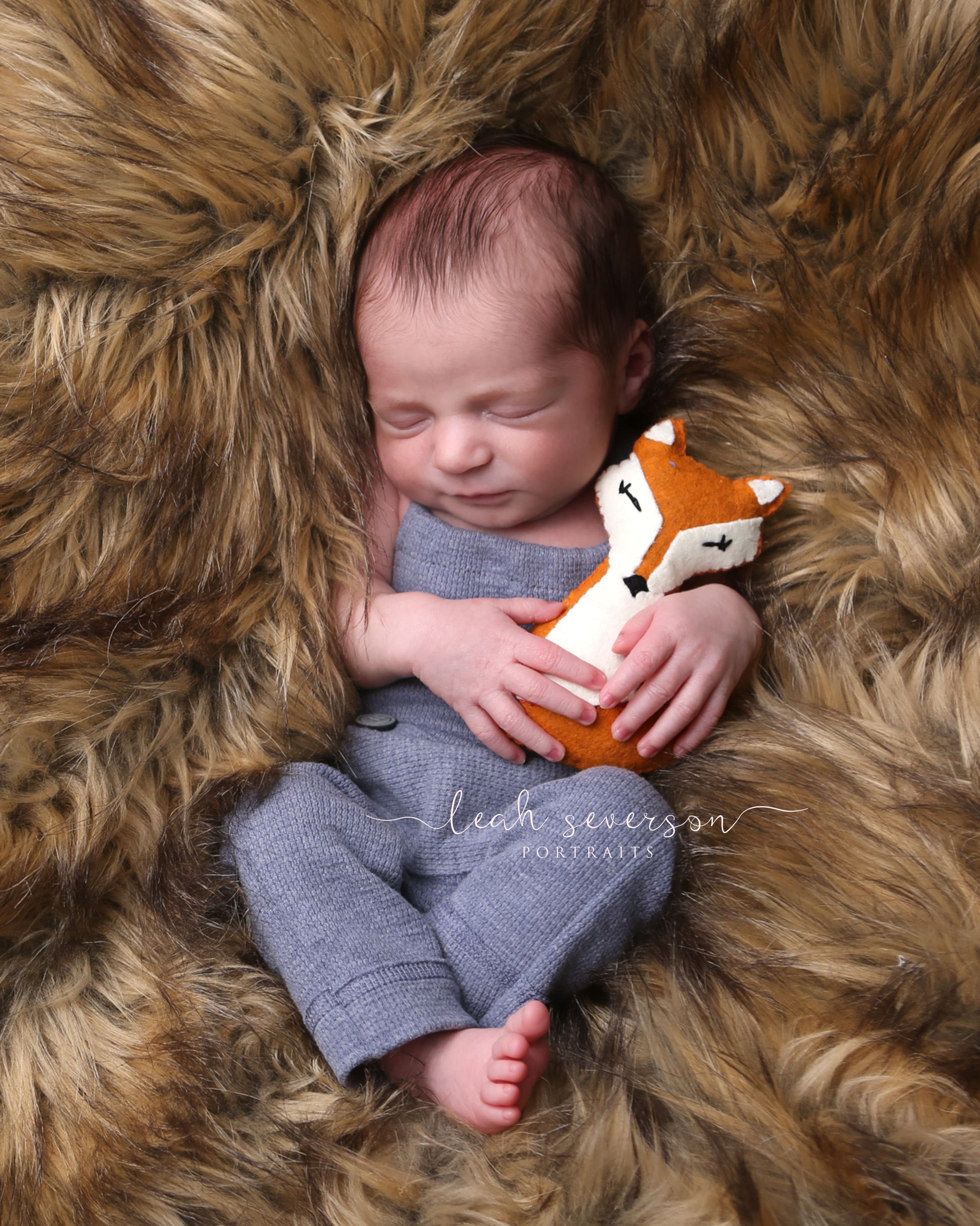 newborn photography ethan indianapolis