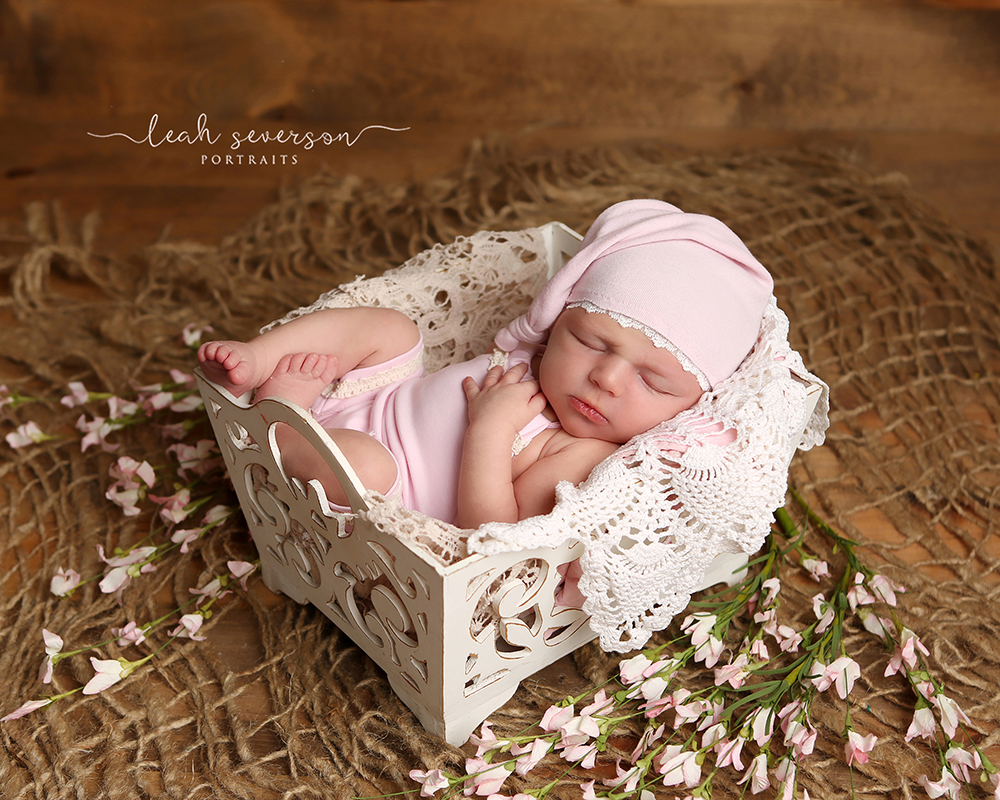 newborn baby photograph carmel indianapolis pink in basket