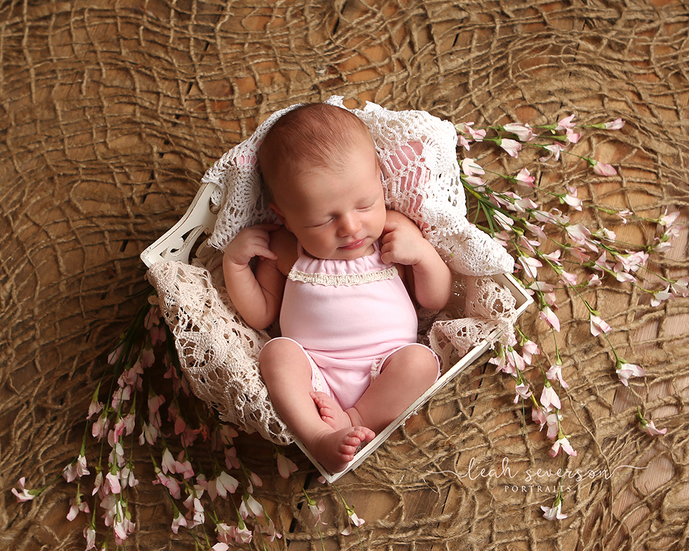 newborn photoshoot carmel indiana baby girl