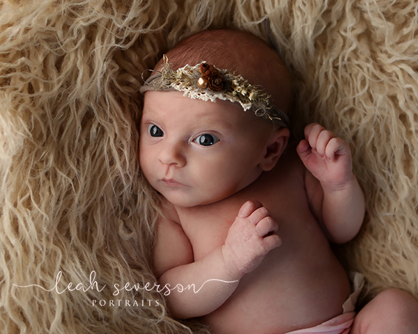 newborn photography baby scarlett