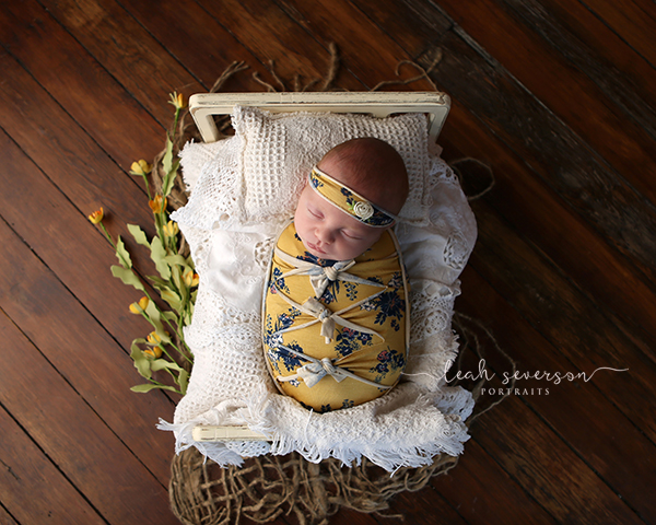 newborn photography scarlett indianapolis