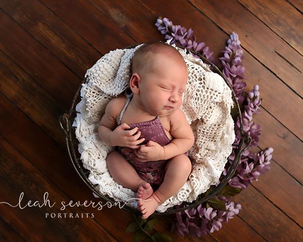 newborn photographer in indianapolis naomi