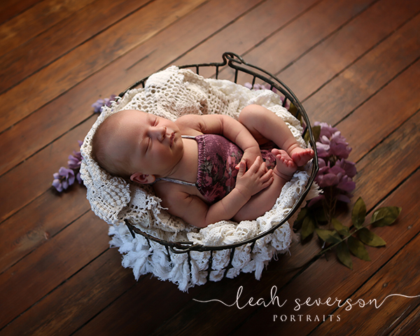 newborn baby in basket photography indianapolis