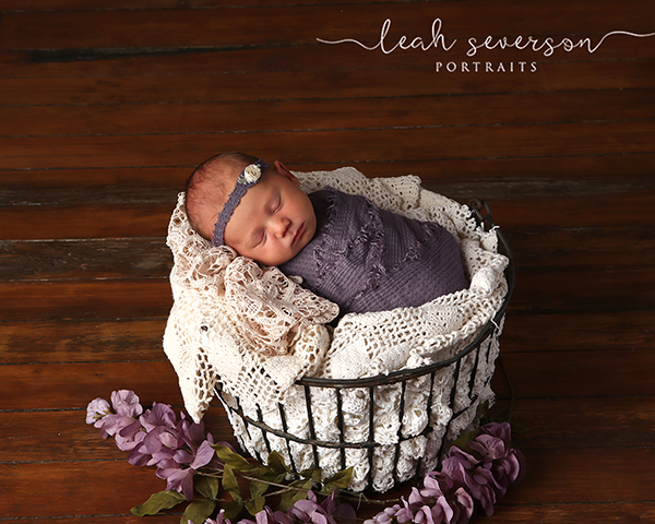 newborn sleeping in wire egg basket photograph indianapolis