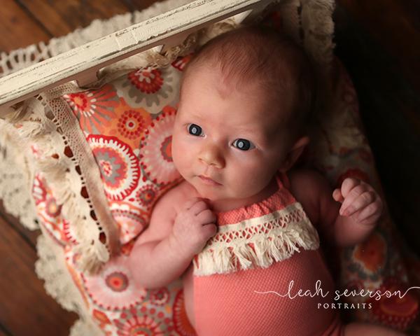 newborn photographer carmel indiana