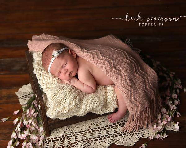 newborn pictures carmel indiana