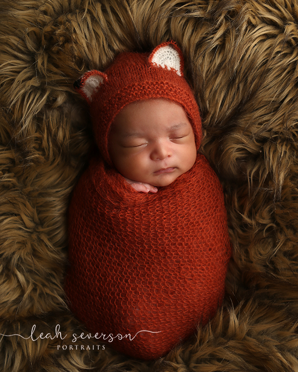 best newborn photographer carmel indiana