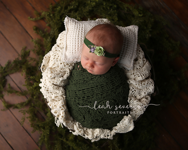newborn photographer carmel, in
